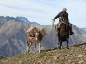 Juanito y la carga