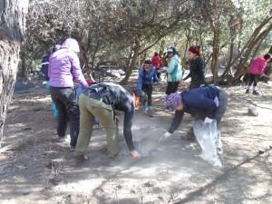 Limpieza de fogata en parque nacional la campana